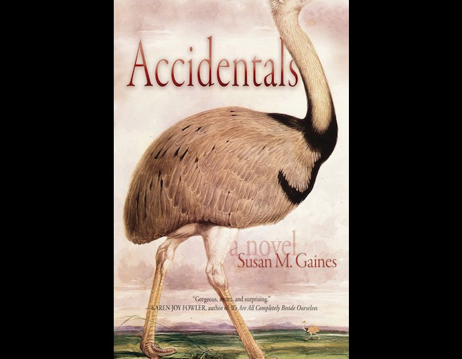 Book Cover: Accidentals by Susan M. Gaines